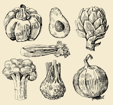 artichoke: vegetables set