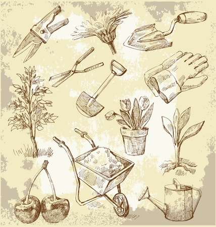 agricultural tools: gardening tools Illustration