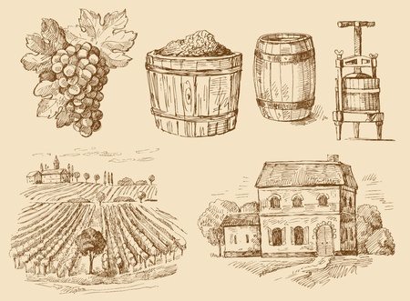 vineyard-original hand drawn collection Vector