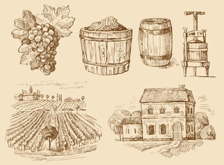 wijngaard-originele hand getrokken inzameling Vector Illustratie