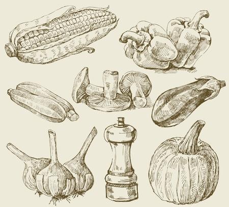 aubergine: Hand-, Gem�se-Set Illustration