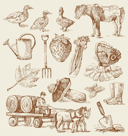 farm-hand drawn set Stock Vector - 13321572