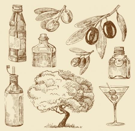 olives: set doodle olive oil