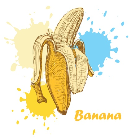 banana skin: hand draw banana Illustration
