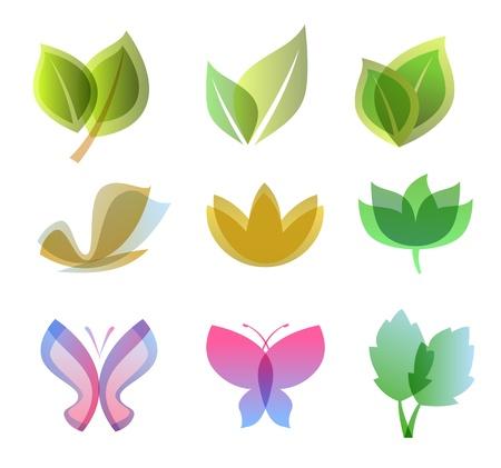 leaf insect: Elements for design