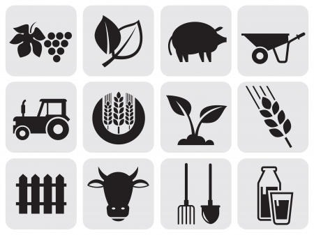 agriculture industry: farming icons