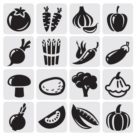 pepe nero: verdure impostate Vettoriali