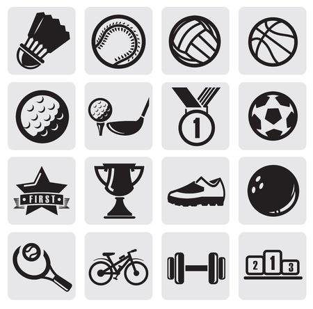 pelotas de deportes: deportes de conjunto Vectores