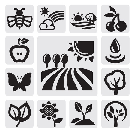seasonal symbol: nature icons