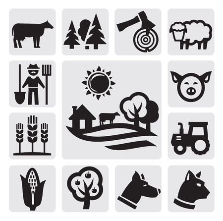 agriculture field: nature icon