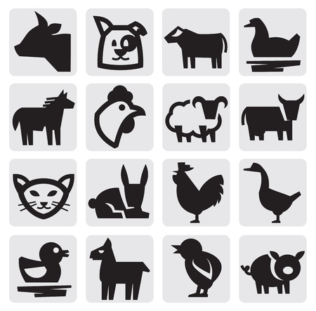 farm animals Stock Vector - 15222475