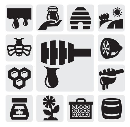 bee hive: honey icon Illustration