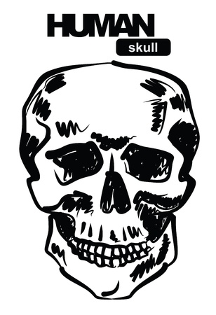skull icon Stock Vector - 17666817
