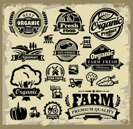 old farm: vector organic harvest labels set on grunge