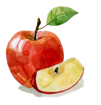 watercolor hand drawn picture of red apple