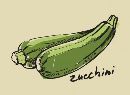 zucchini: hand drawn fresh color zucchini on beige