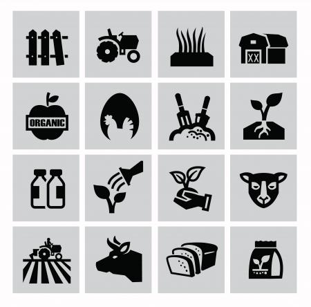 vector zwarte landbouw en veeteelt iconen set
