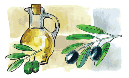 vector hand drawn picture of olive oil Vector