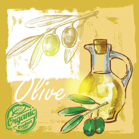vector hand drawn picture of olive oil photo