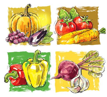 berenjena: imagen dibujada mano vector de granja frescos