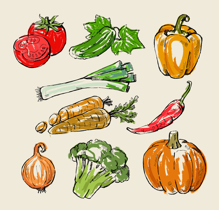 hand drawn fresh color vegetables on beige Vector