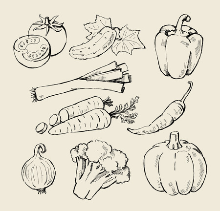 hand drawn black fresh vegetables on beige Vector