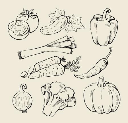 comidas saludables: mano, dibujado, verduras frescas negro en color beige