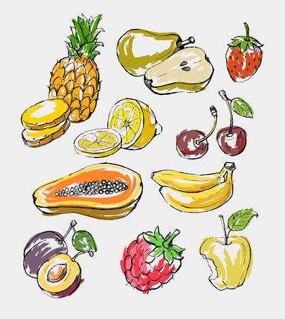 hand drawn fresh color fruit on gray Vector
