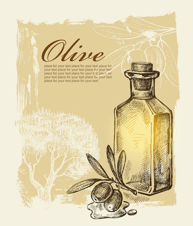 vector hand drawn olive on paint background Vector