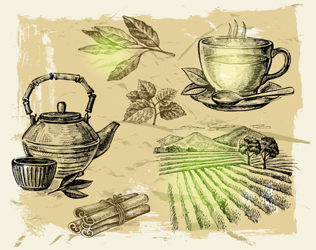 tea ceremony: vector hand drawn tea on paint background Illustration
