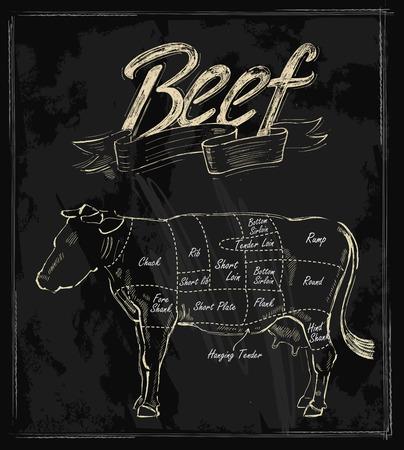 beef: cortes de carne procedentes mano vector tabla en negro