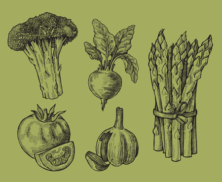 hand drawn of vegetables