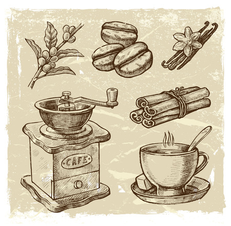 coffee beans: vector brown hand drawn picture of coffee theme
