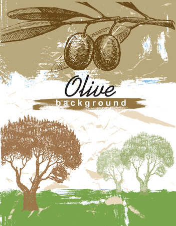 hand drawn olive Vector