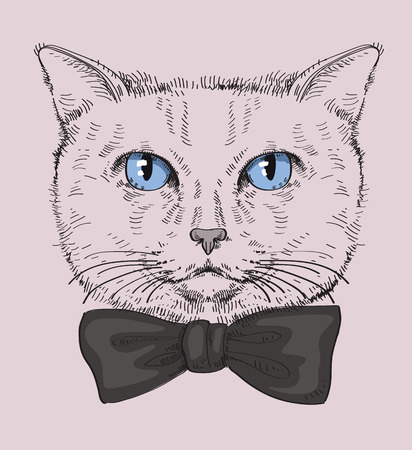 Hipster Cat Vector