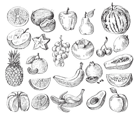 pineapple juice: vector set of different hand drawn fruit Illustration