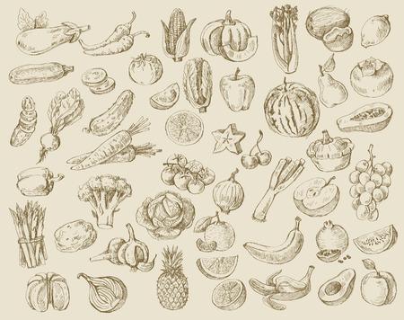 복숭아: 다른 손으로 그린 과일과 야채의 벡터 집합