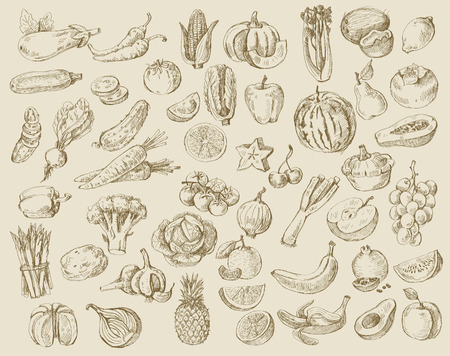 drawing: vector set of different hand drawn fruits and vegetables Illustration
