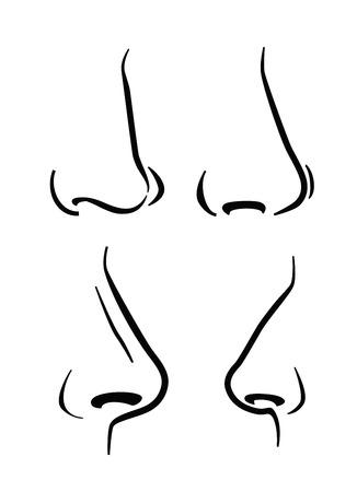 nose: Icona naso Vettoriali