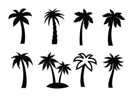 arboles frutales: icono de palma