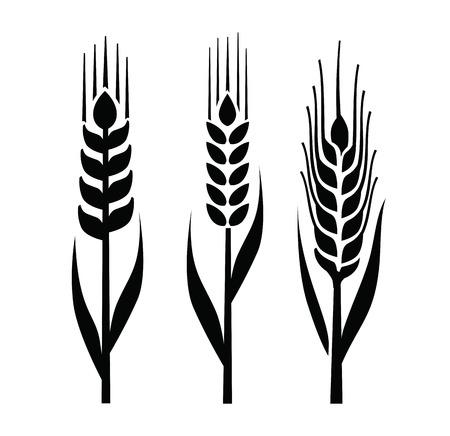 crop circle: wheat icon