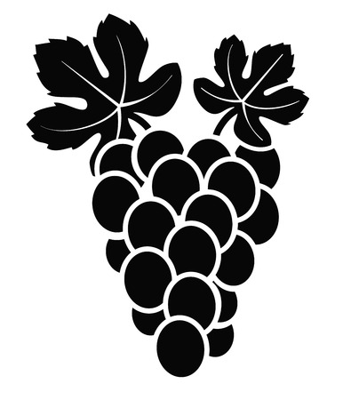 vector black illustration of grapes on white Illustration
