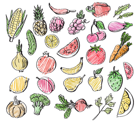 hand drawn fruits and vegetables Vector