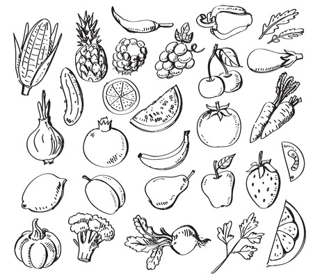 fruta: frutas y verduras dibujados a mano