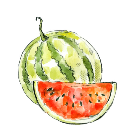 picture of watermelon 向量圖像