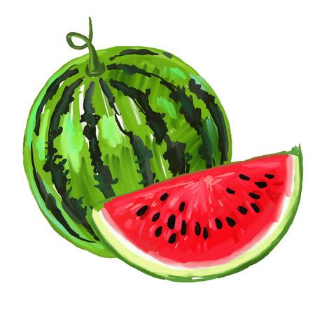 picture of watermelon Vettoriali