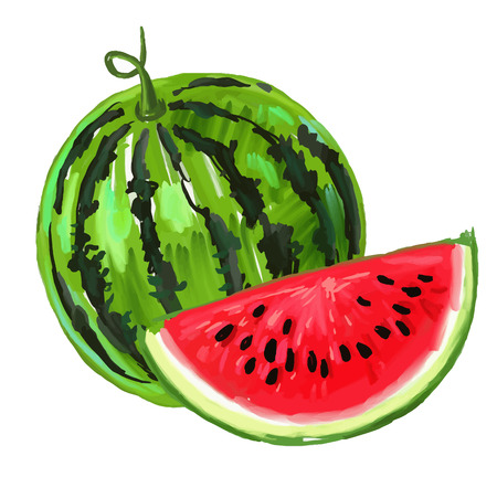 picture of watermelon Stock Illustratie