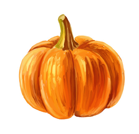 beeld van de pompoen Stock Illustratie