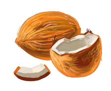 cocos: picture of coconut