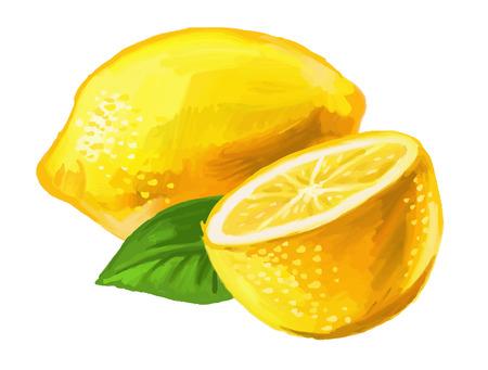 picture of lemon Stock Illustratie